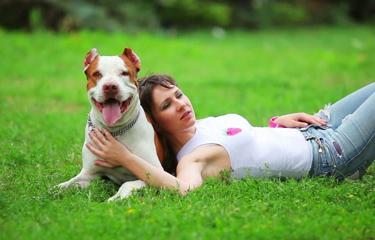 tun Sie heute für Ihr Haustier